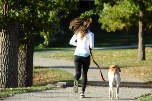 ジョギングもワンちゃんと