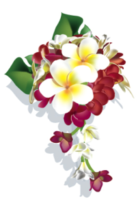 ハワイアンフラワー