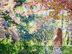 Girl in cherry blossom garden on a spring day