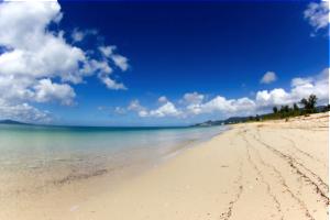 青い海のビーチ