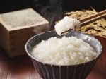 Japanese rice KOME