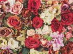 Bunch of Colorful Artificial Flowers, vintage tone, soft focus