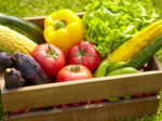 夏野菜の美容効果